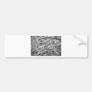 Snowy branches bumper sticker