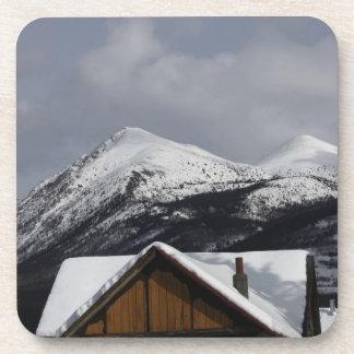 Snowy Cabin Coaster