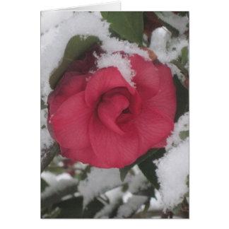 Snowy Camellia Card