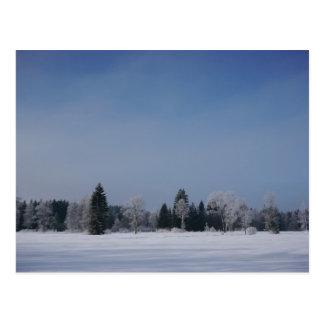 Snowy cold winter landscape 12 postcard
