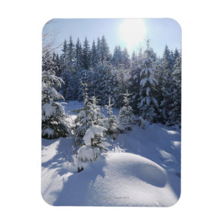Snowy cold winter landscape 2 flexible magnet