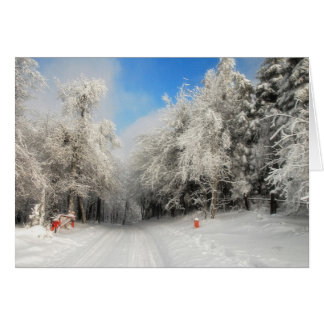 Snowy Country Road Christmas Card