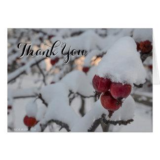 Snowy Crab Apple Thank You Card