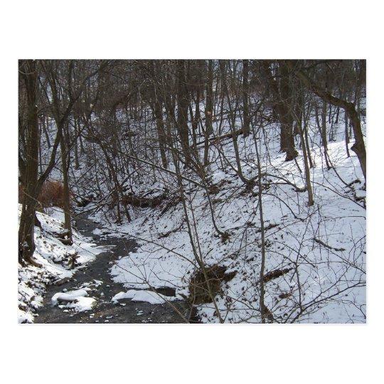 Snowy creek postcard