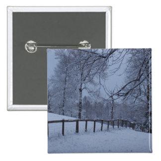 Snowy Day Pins