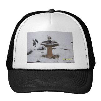 snowy day birdbath hats