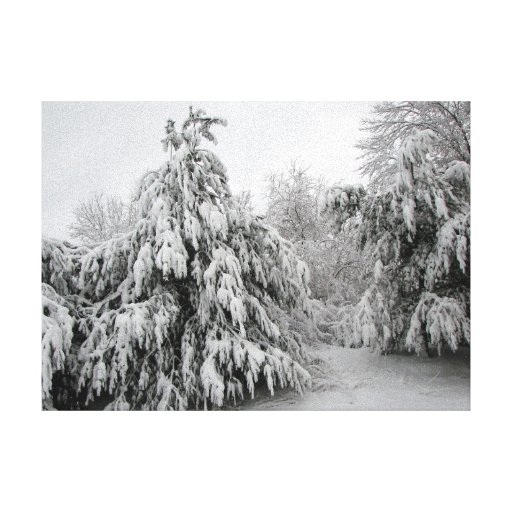 Snowy Day Gallery Wrapped Canvas