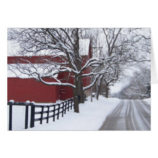 Snowy Day Greeting Cards