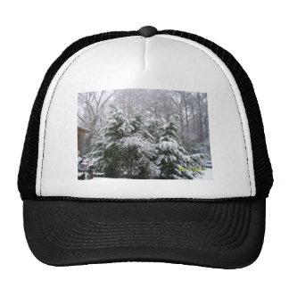 snowy day hat