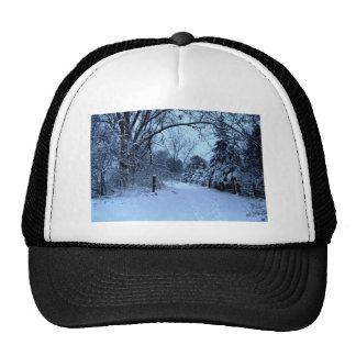 Snowy Day. Mesh Hat
