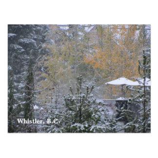 Snowy Day in Whistler B.C. Postcard