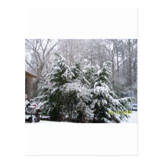 snowy day postcard