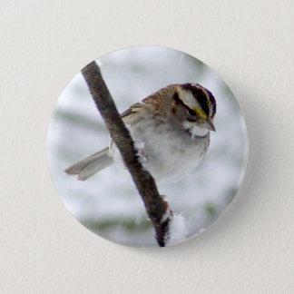 Snowy Day Sparrow Bird Button
