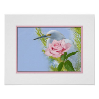 Snowy Egret and Pink Rose Poster