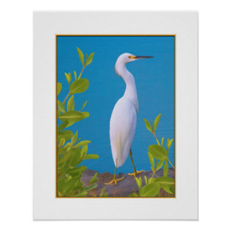 Snowy Egret at the Pond Print