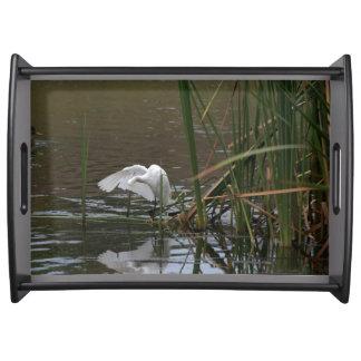 Snowy Egret Bird Wildlife Photography Serving Tray