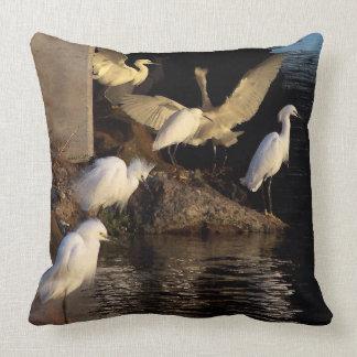 Snowy Egret Birds Wildlife Animals Throw Pillow