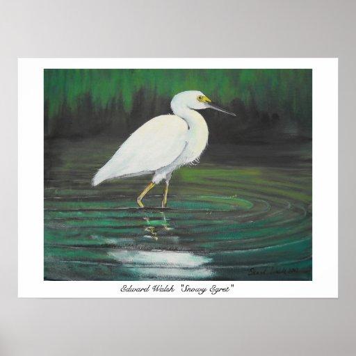 Snowy Egret poster print
