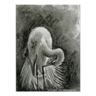Snowy Egret - water bird Poster or Fine Art Print