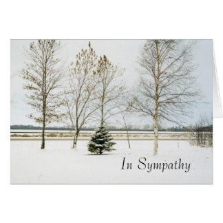 snowy evergreen1card, In Sympathy Card