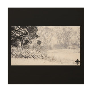 Snowy Field Wood Print