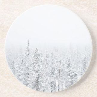 Snowy forest coaster