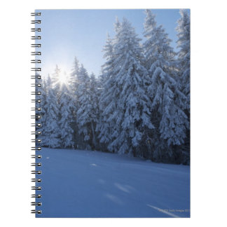 snowy forest in the mountain notebooks