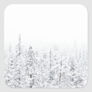Snowy forest square sticker