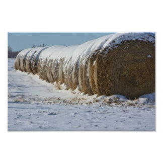 Snowy Kansas Country Hay Bales Art Photo