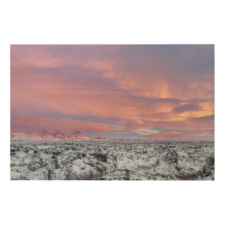 Snowy Lava field landscape, Iceland Wood Wall Art