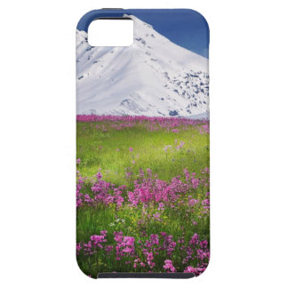 snowy mountains iPhone 5 case