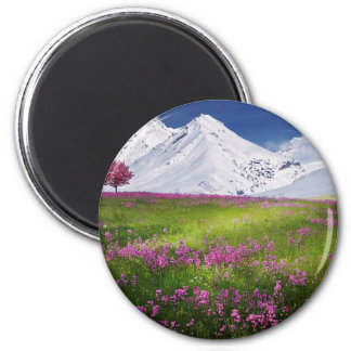 snowy mountains magnet