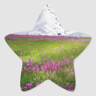 snowy mountains star sticker