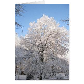 Snowy Oak Card