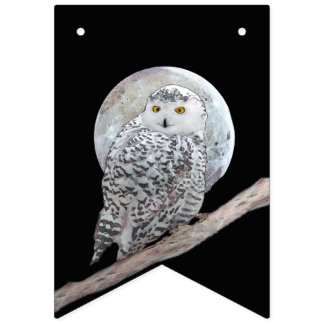 Snowy Owl and Moon Bunting