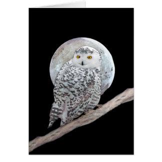 Snowy Owl and Moon Card