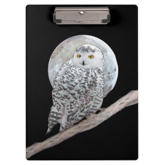 Snowy Owl and Moon Clipboards