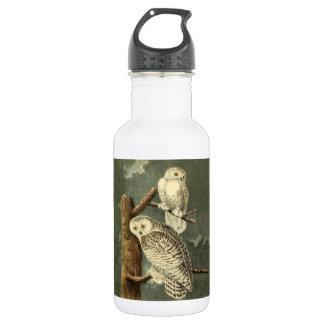 Snowy Owl Audubon Bird Art Illustration Artwork 532 Ml Water Bottle