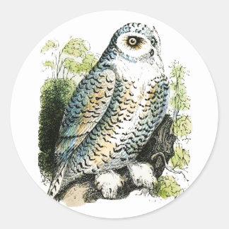 Snowy Owl Bird Classic Round Sticker