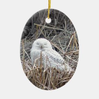 snowy owl ceramic oval decoration