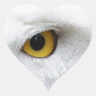snowy owl eye searching for love heart sticker