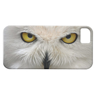 Snowy Owl Eyes Case For The iPhone 5