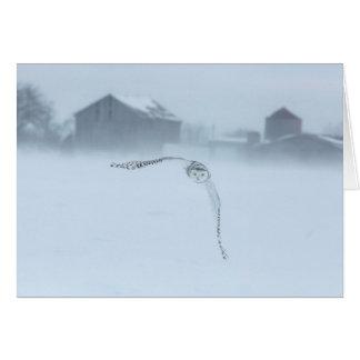 Snowy Owl In Flight In Winter Card