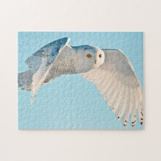 Snowy Owl in flight Jigsaw Puzzle