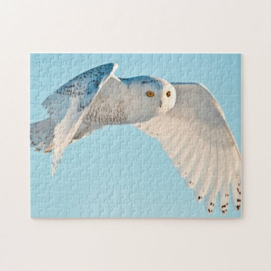 Snowy Owl in flight Jigsaw Puzzle