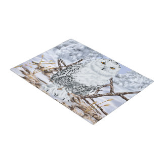 Snowy Owl in Snow Doormat
