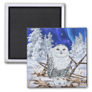 Snowy Owl in Snow Magnet