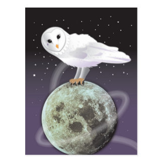 Snowy owl in the moonlight postcard