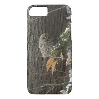 snowy owl iPhone 7 case