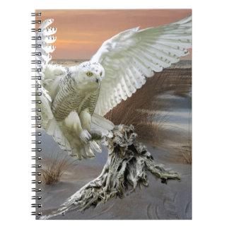Snowy Owl Notebooks